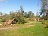 9464 - Sturmschäden Golfplatz Rheintal - 14
