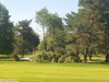 9464 - Sturmschäden Golfplatz Rheintal - 4