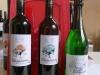 4919 - Mauritiuskonzert mit Fluegelwein - 1.jpg