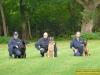 4313-polizeihunde-8