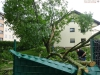 9451 - Sturmschäden 7