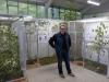 5790 - Vogelausstellung Sandhausen - 1