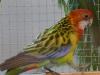 4403-vogelzuechter-leimen-5