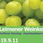 Leimener Weinkerwe 16.-19.9. – Vollständiges Programm