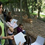 Kunstverein: Ferientreff am Leimener Wildgehege
