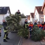 2011er Weihnachtsbäume: Einmal brennen sie noch!