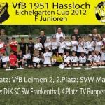 VfB F-Junioren gewinnen Pfingsturnier und Deutschland sein erstes Spiel