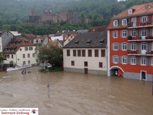 489 - Hochwasser Heidelberg