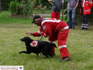 585 - Gnadenhof Sommerfest 5 - Rettungshund1