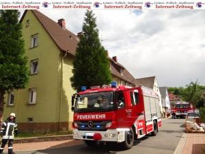 767 - Feuerwehr-Grilleinsatz 2