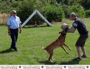 799 - PD Hundestaffel 13
