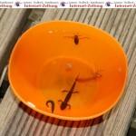 Mit Landesförderung Amphibien und Reptilien retten -  Anträge bis 10. Mai