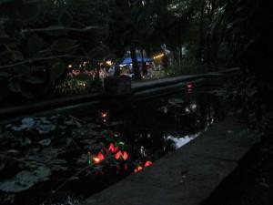 973 - Menzerpark Liedertafel Lichterfest 3