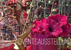 1174 - Blumenwerkstatt Advent - Ausschnitt
