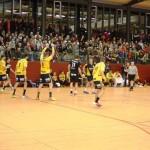 AGAPE Benefiz-Spiel TSG gegen Rhein-Neckar Löwen