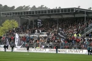 3503 - Pauli vs SVS