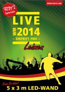 3827 - Fody WM2014 Live Plakat 480