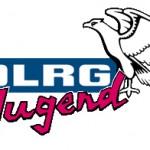 Jahres-Hauptversammlung der DLRG-Jugend Leimen