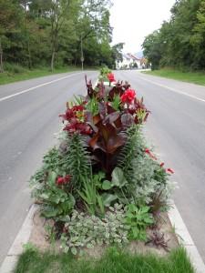 4021 - Straßenblumen Sandhausen 2