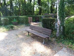 4300 - Bank Friedhof St.Ilgen Baumgräber 003