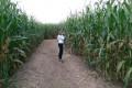 Offene Kinder- und Jugendarbeit Basket veranstaltet Ausflug ins Maislabyrinth