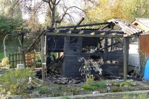 4463 - abgebrannte Gartenhütte - 1