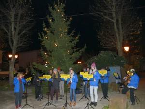 4541 - Weihnachtsbaum Dilje