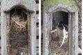 Zoo Heidelberg bietet Zimmerservice der besonderen Art: Frühjahrsputz