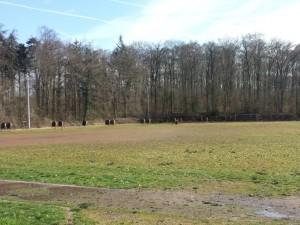 5018 - Waldsportplatz Nussloch