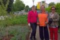 Engagement für unsere Grünflächen: Haus & Grund bepflanzt und pflegt Beet