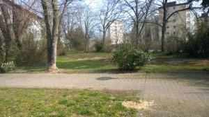 5296 - Urban Gardening