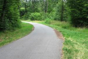 5415 - Asphaltierter Waldweg