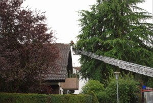 5434 - Blitzeinschlag Walldorf 2