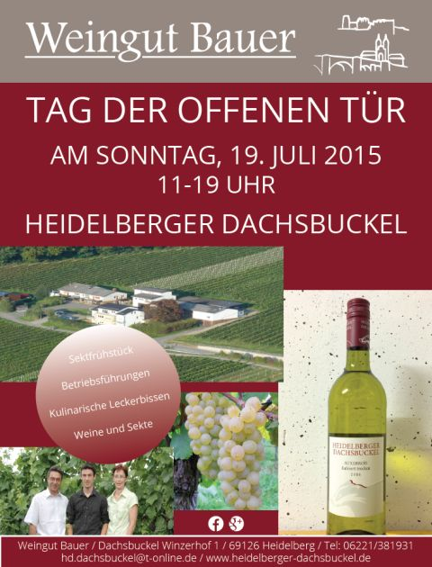 Dachsbuckel TdoT2015  - 480 Plakat-2