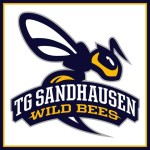 Wildbees Basketball Sandhausen U12w: Wir waren so nah dran!