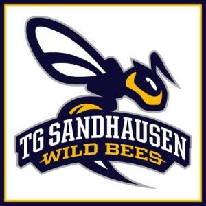 Tg Sandhausen