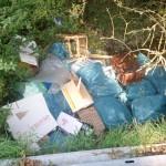 Illegale Müll-, Grüngut- und Bauschuttablagerungen im Nußlocher Gemeindegebiet