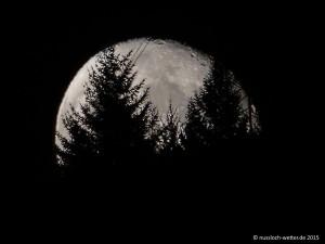 5845 - Mond in Nussloch