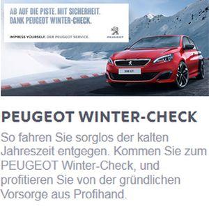 Wintercheck Peugeot