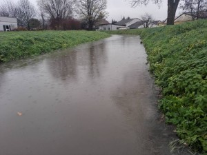 5960 - Hochwasser 2