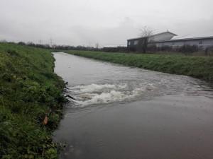 5960 - Hochwasser 3