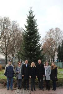 5990 - Weihnachtsbaum 1