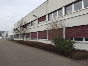 6590 - Halle Sinsheim Flüchtlinge 2