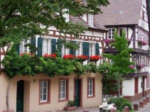 6765 - Weinheim 1