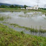"""""""Elvira"""" hält die Region in Atem: Hochwasser, Überflutungen, Staßensperrungen"""