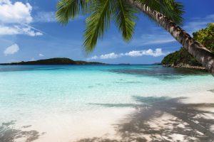 Tropischer Strand, Karibik