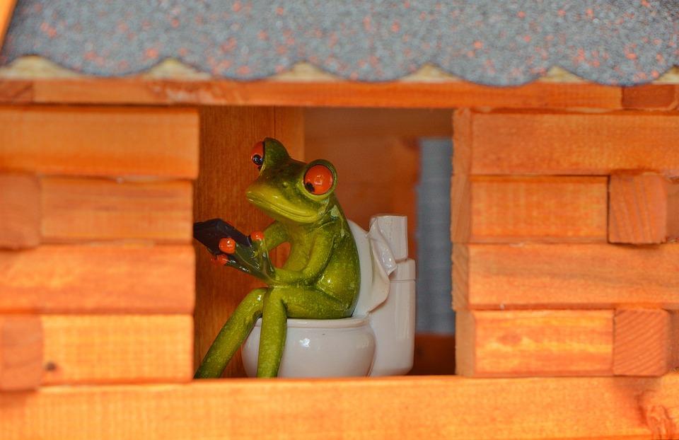 frog-927602_960_720