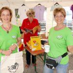 Auch zum Katzen-Kuscheln: Tom-Tatze Tierheim sucht ehrenamtliche Helfer