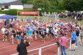 Fast 300 Teilnehmer (und ein Hund) beim Nußlocher Wiesenlauf