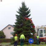 Aber hallo! Das ist ja mal ein Baum! Weihnachten kann kommen!